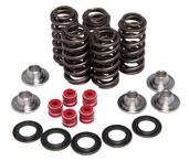 """Racing Spring Kit, Titanium, 0.380"""" Lift, Various Yamaha® Applications"""