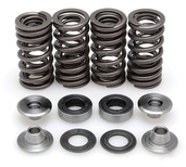 "Racing Spring Kit, Titanium, 0.350"" Lift, Honda®, CRF™ 250R, 2008-2009"