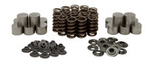 """Shim-in-Tappet Spring Kit, H.T. Steel, 0.445"""" Lift,  Arctic Cat®, Various 998cc Triples, 2017-2019"""