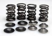 "Racing Spring Kit, Titanium, 0.390"" Lift, Various Honda® Applications"