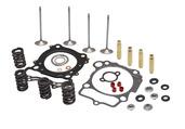 """Cylinder Head Service Kit, 0.440"""" Lift, Suzuki®, LT-Z™/ D-RZ™ 400, 2000-2019"""