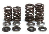 "Racing Spring Kit, Titanium, 0.440"" Lift, Honda®, CRF™ 450X, 2005-2017"