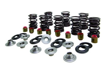"Turbo Spring Kit, Titanium, 0.450"" Lift, Seat 65#, Polaris®, Various 900/1000's, 2013-2020 picture"