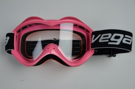 Vega Pink Goggles picture