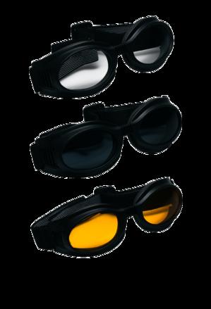 Vega Clear I-Gear Goggle picture