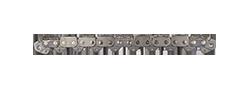 "ICS PowerGrit XL Diamond Chain 10""/25cm/50 Drive Links picture"