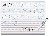 Modern Manuscript Dry Erase Board