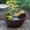 AquaGarden Mini Pond Kit
