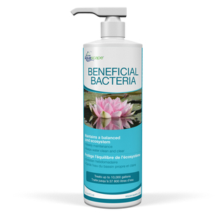 Beneficial Bacteria for Ponds (Liquid) - 16 oz picture