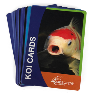 Koi Cards picture
