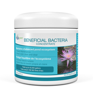 Beneficial Bacteria for Ponds (Dry) - 8.8 oz / 250 g picture