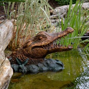 Alligator Spitter picture