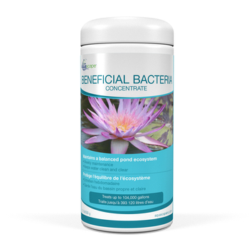 Beneficial Bacteria for Ponds (Dry) - 500 g / 1.1 lb picture