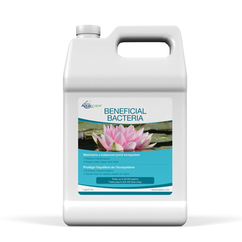 Beneficial Bacteria for Ponds (Liquid) - 3.78 L / 1 gal picture