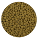 Premium Color Enhancing Fish Food Pellets - 1.1 lbs / 500 g additional picture 2