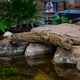 Faux Driftwood - 30 inch additional picture 1