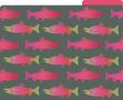 Sea & Sky File Folders - 24/Set additional picture 5
