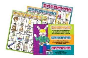 Homonyms, Synonyms & Antonyms Chart Set picture