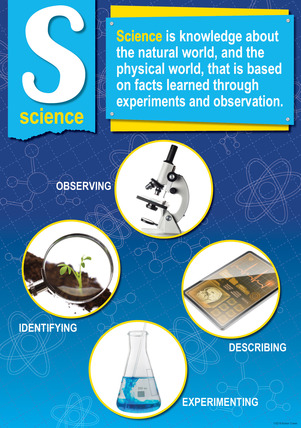 NEW! STEM/STEAM Poster - Science picture