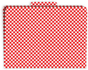 Red Check File Folder picture