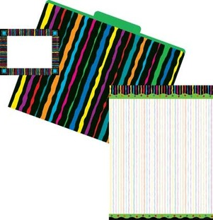 Get Organized! Neon Stripes picture