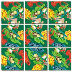 Frogs Scramble Squares® picture