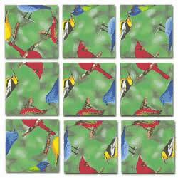 North American Birds Scramble Squares® picture