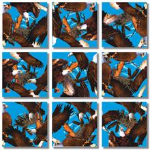 Bald Eagles Scramble Squares® picture