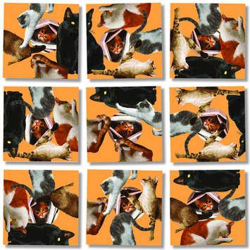Cats Scramble Squares® picture