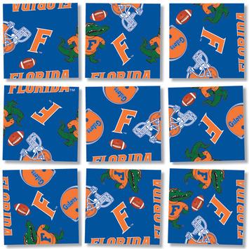 U of FL, Scramble Squares® picture