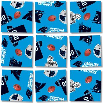 Carolina Panthers, NFL Scramble Squares® picture