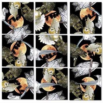 Owls Scramble Squares® picture