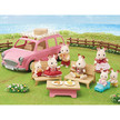 Family Picnic Van additional picture 6