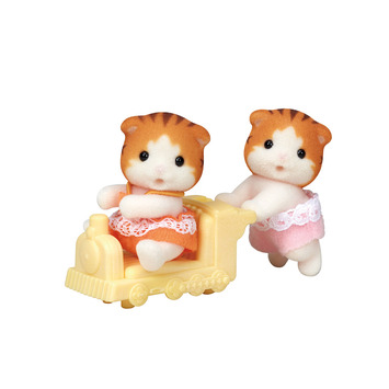 Maple Cat Twins picture
