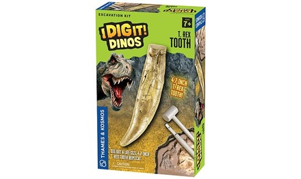 I Dig It! Dinos - T. Rex Tooth Excavation Kit picture