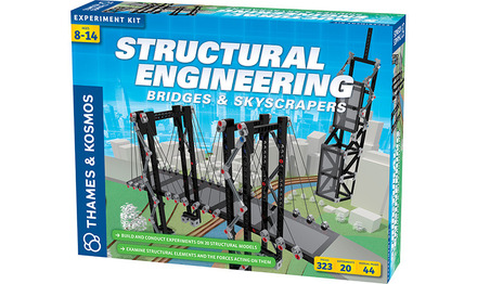 Structural Engineering: Bridges & Skyscrapers picture