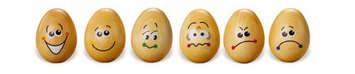 Eggspressions picture