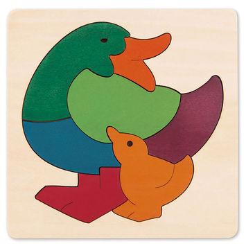 Rainbow Duck picture