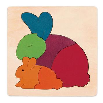 Rainbow Rabbit picture