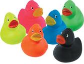 Rubber Duckies Multi Colors