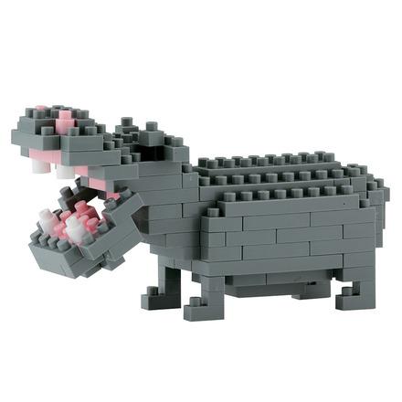 Hippopotamus picture