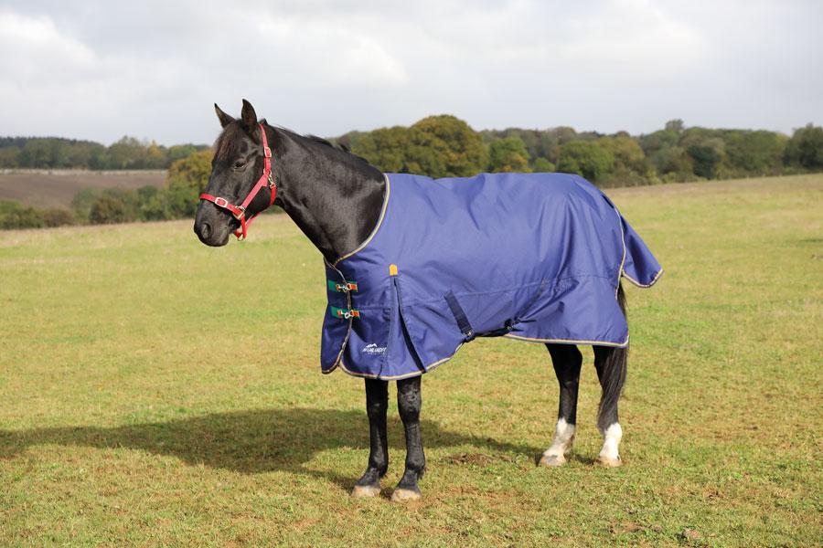 Highlander 100g Blanket picture