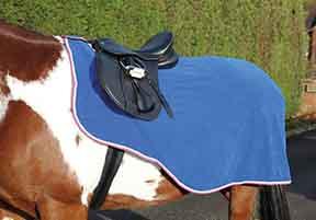 Fleece Exercise Sheet picture