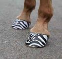 Hoofies