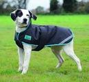 Tempest Plus Dog Coat