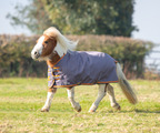 Miniature Highlander 200g Blanket