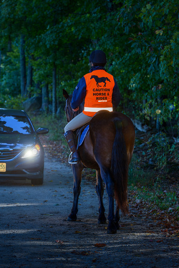 EQUI_FLECTOR Safety Vest picture