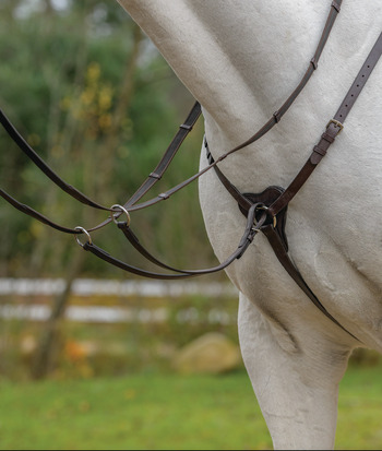 Three Point Breastplate picture