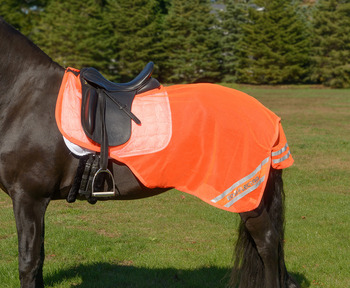 Equi-Flector Reflective Exercise Mesh Sheet picture