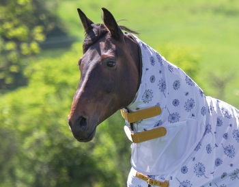 Tempest Fly Sheet Neck picture